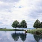 book reading lake